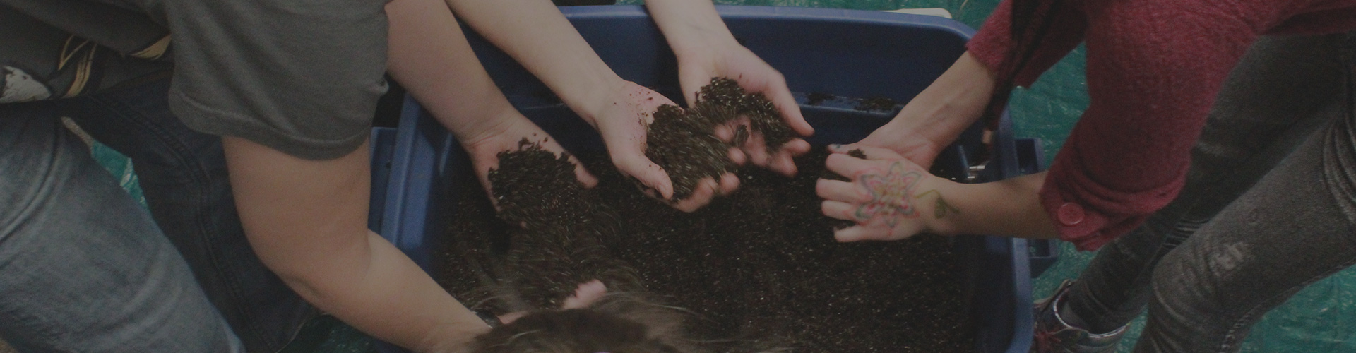 A group of children lean over a tote bin filled with soil. They reach their hands in the bin and grab soil with their hands. A black filter darkens the image.
